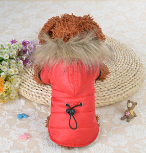 Pet Coat for Small Dogs - Yip & Purr® Official Website
