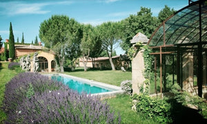 The Provence Experience, France