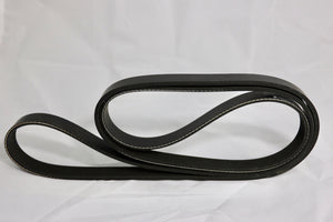 Serpentine Belt 1650281