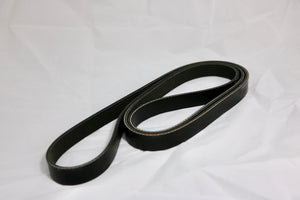 Serpentine Belt 1610061