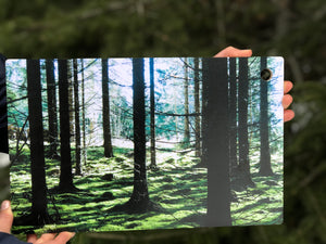 Spruce Forest Cutting Board