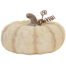 Terra cotta Cream Pumpkin