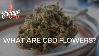 What Are CBD Flowers?