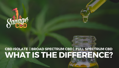 CBD Isolate, Broad Spectrum CBD, & Full Spectrum CBD What Is the Difference?