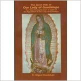 The Seven Veils of Our Lady of Guadalupe, Fr. Miguel Guadalupe