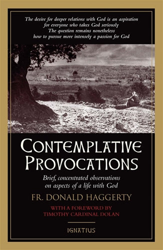 Contemplative Provocations by Haggerty