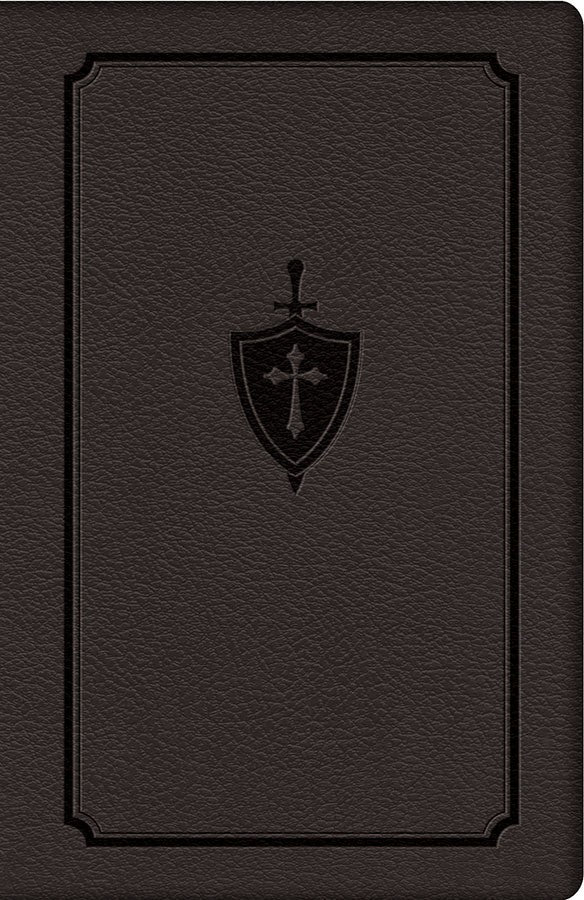 Manual for Conquering Deadly Sin by Fr. Dennis Kolinski, SJC