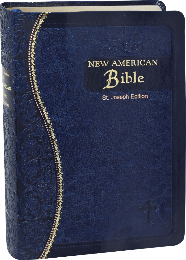 St Joseph Medium Size New American Bible, Revised Edition, Blue Flexible Simulated Leather, Gilded Edge