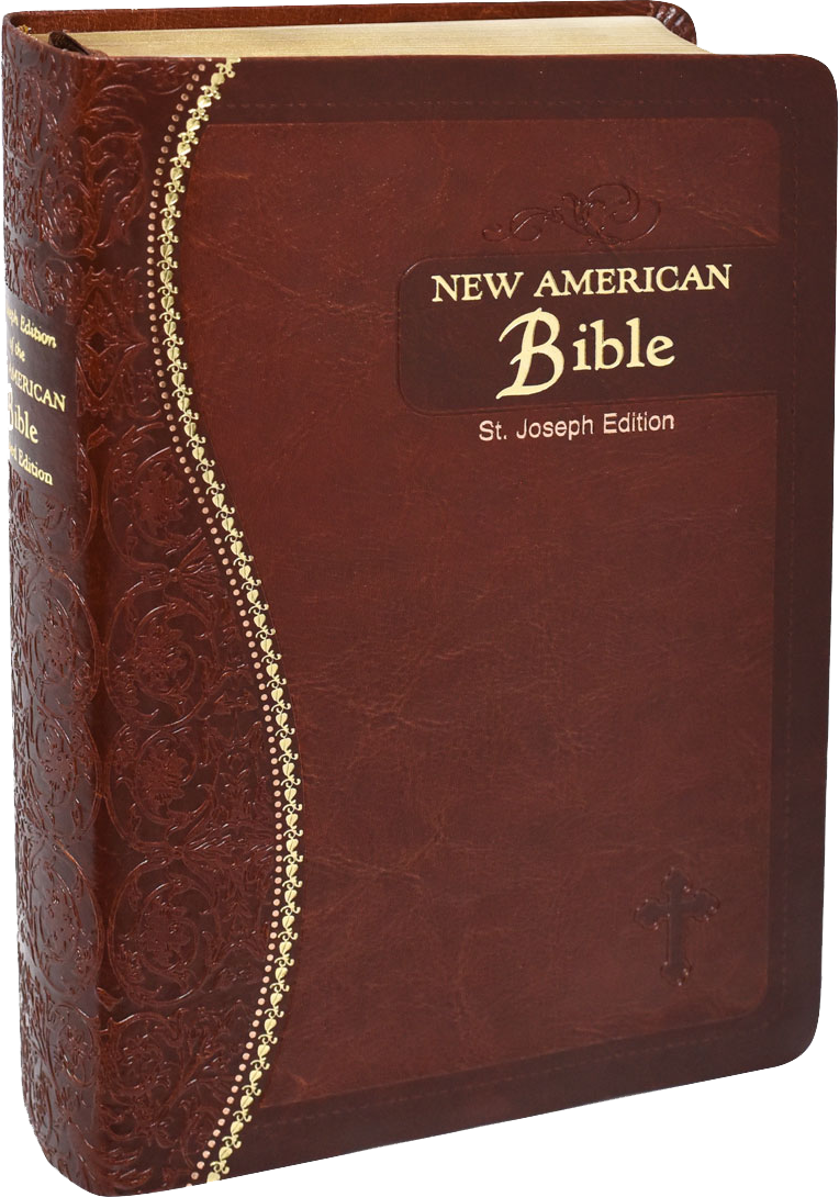 St Joseph Medium Size New American Bible, Revised Edition, Brown Flexible Simulated Leather, Gilded Edges