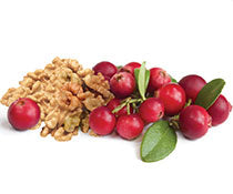 White Balsamic Vinegar - Cranberry Walnut