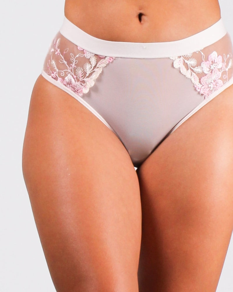 Hot Mesh Express Panties Intimates