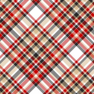 Multi Bias Plaid Flannel