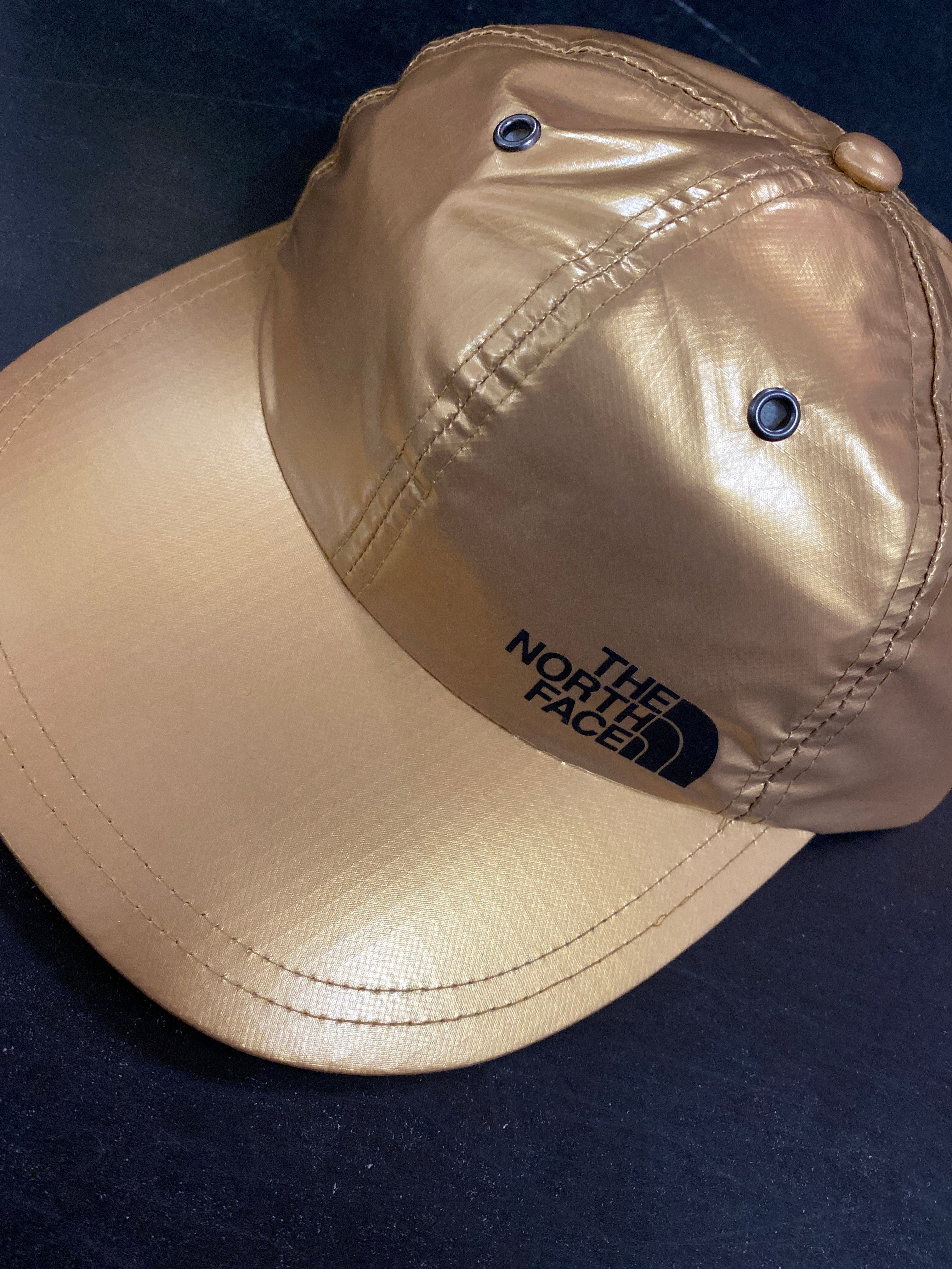 Supreme The North Face Metallic 6 Panel hat