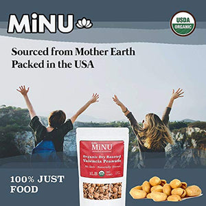 MiNU Organic Dried Blueberries No Sulfur 8 oz, Mindful Nutrition No Added Sugar (Apple Juice Infused), Seedless, Superfood, Raw, Paleo, Vegan, NonGMO, Gluten Free
