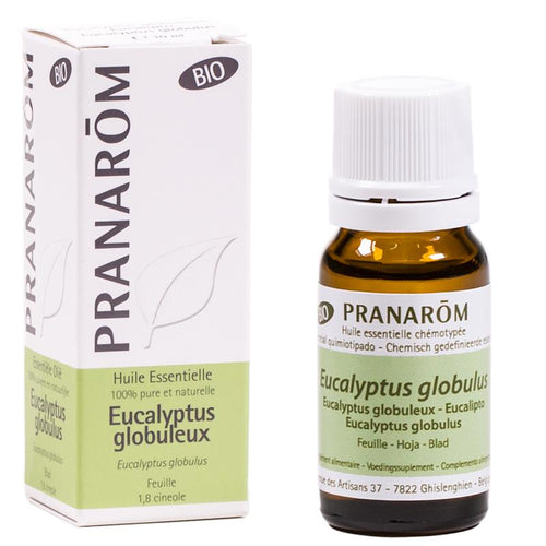Essential oil Eucalyptus globulus (Eucal. glob.) organic - By Surya Shop
