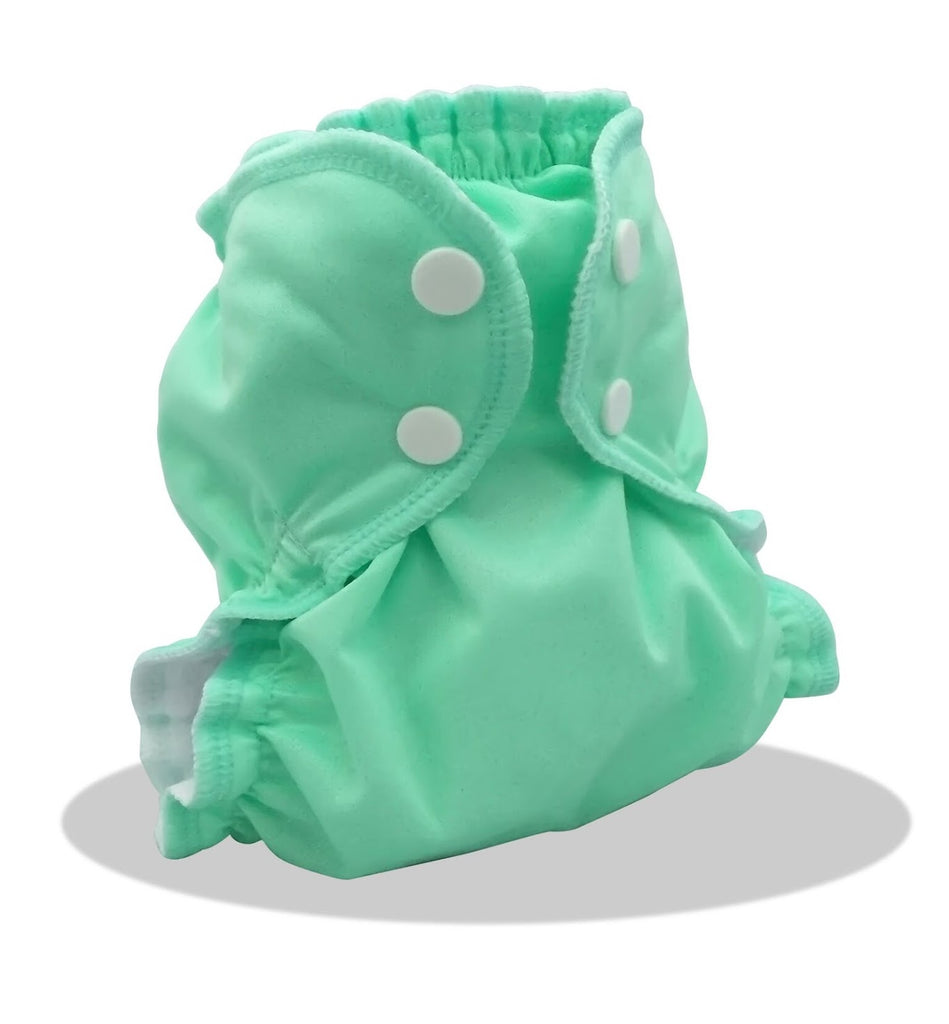 Mint To Be AppleCheeks Cloth Diaper