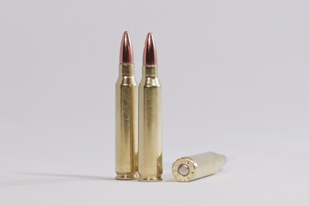 223 Remington 55 grain FMJ ammunition