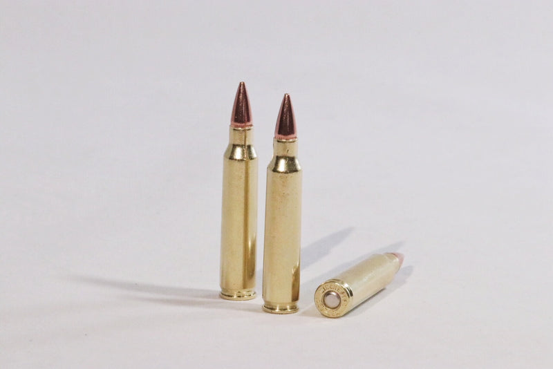 223 Remington 55 grain hollow point ammunition