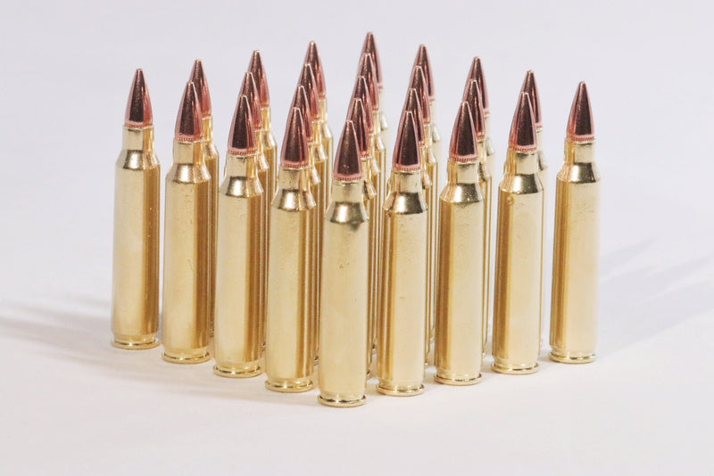 Multiple 223 Remington 55 grain hollow point ammunition
