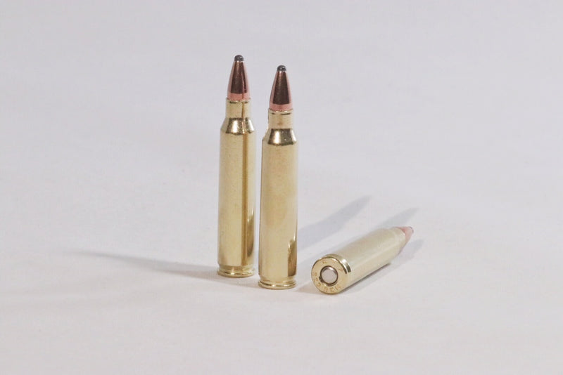 223 Remington 55 grain soft point ammo