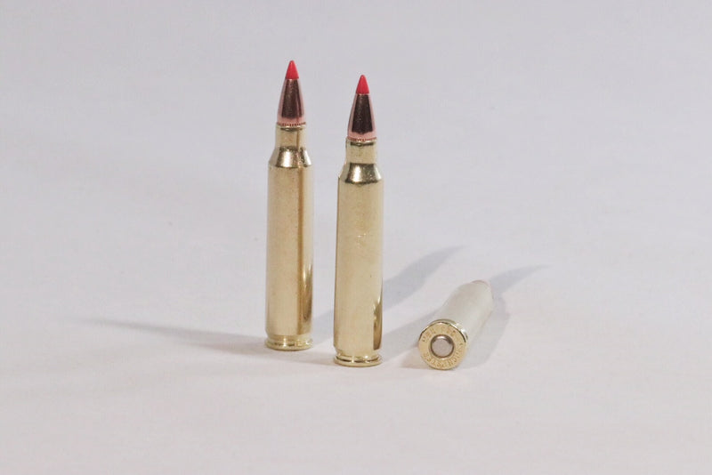 223 Remington 55 grain grain v-max