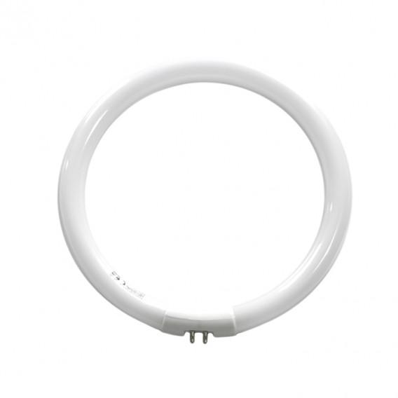 Naturalight 22W/T5 Circular Tube - [product-vendor] - Craftco Ltd - NZ