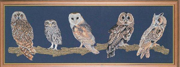 Owls of Britain Chart 95x30cm - [product-vendor] - Craftco Ltd - NZ
