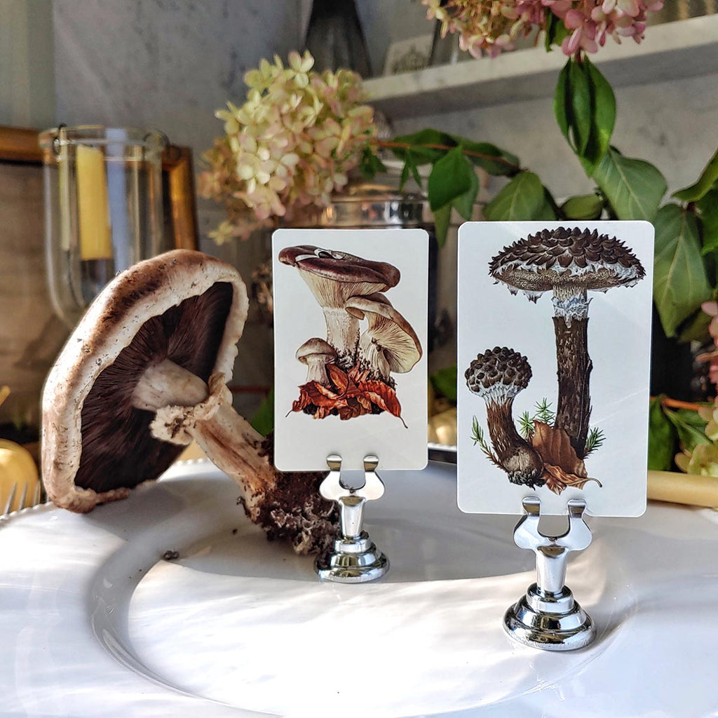 The Punctilious Mr. P's Old Man of the Woods place cards