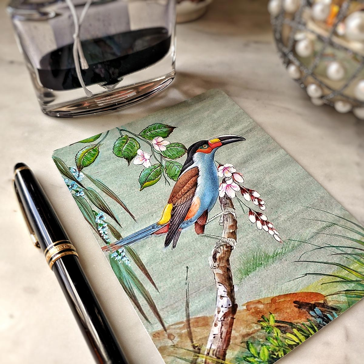 Pack of Note Cards: Birds of India