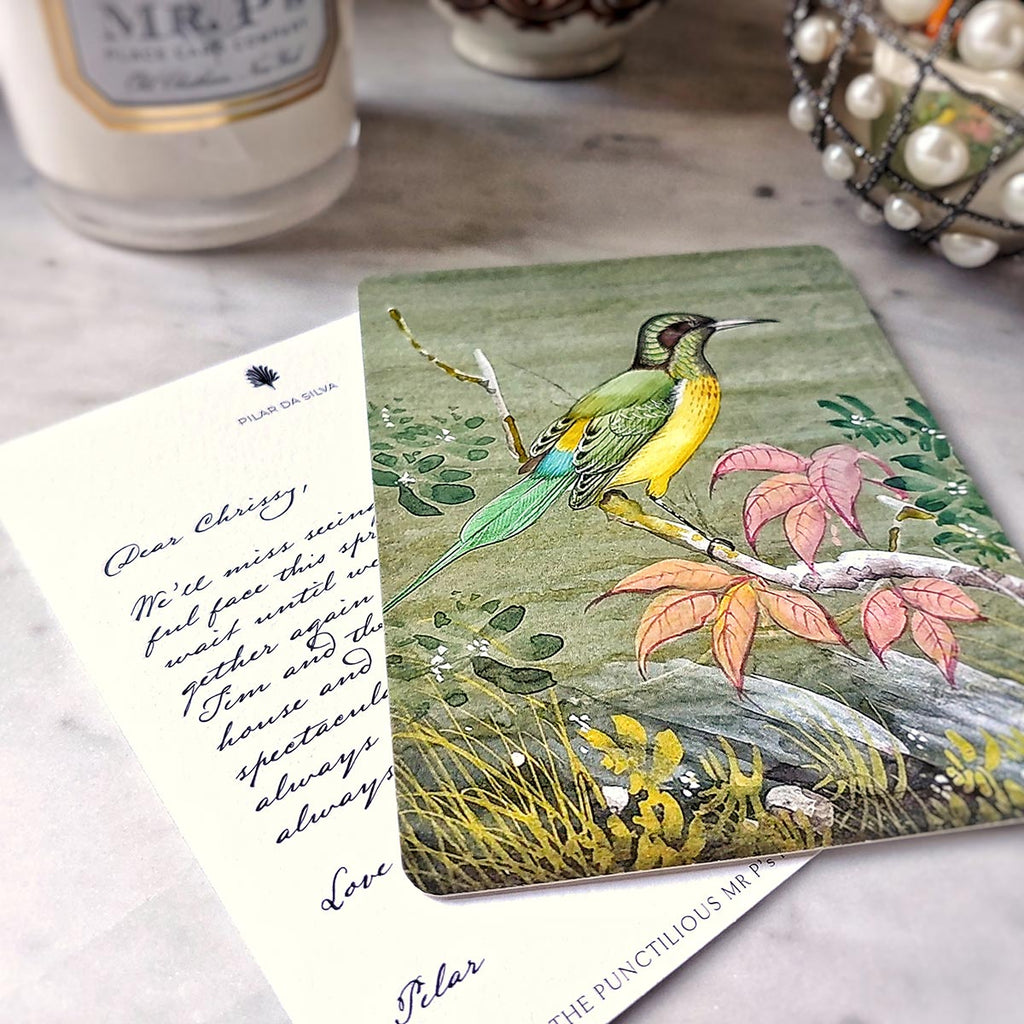 The Punctilious Mr. P's 'birds of india' individual note card with digital digital calligraphy
