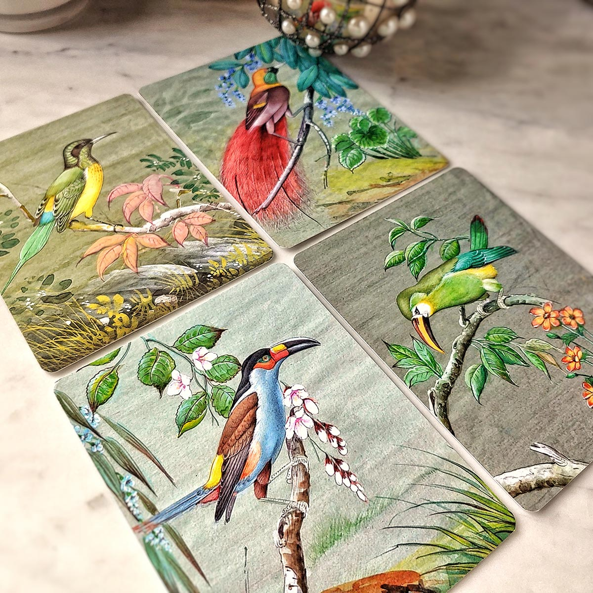 The Punctilious Mr. P's 'birds of india' note card pack featuring all 4 images of the birds