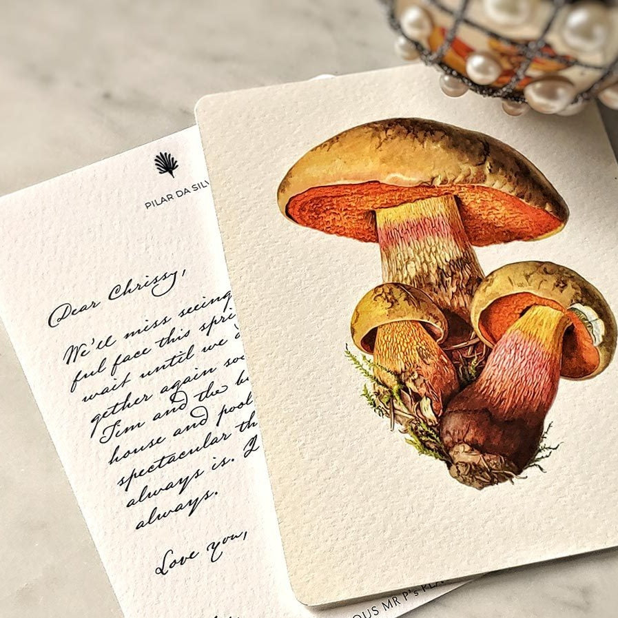The Punctilious Mr. P's 'boletus beauties' mushrooms note card pack with old kinderhook script on personalized card