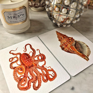 The Punctilious Mr. P's 'octopodes & conch' personalized note card showing a beautiful red octopus and conch shell illustration