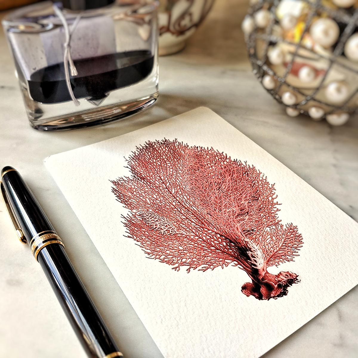 The Punctilious Mr. P's 'Red Seaweed & Coral' note card pack showing red sea fan