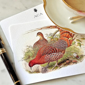 showing a detail of the pheasant on a Mr. P's note card, with personalized initials on the back