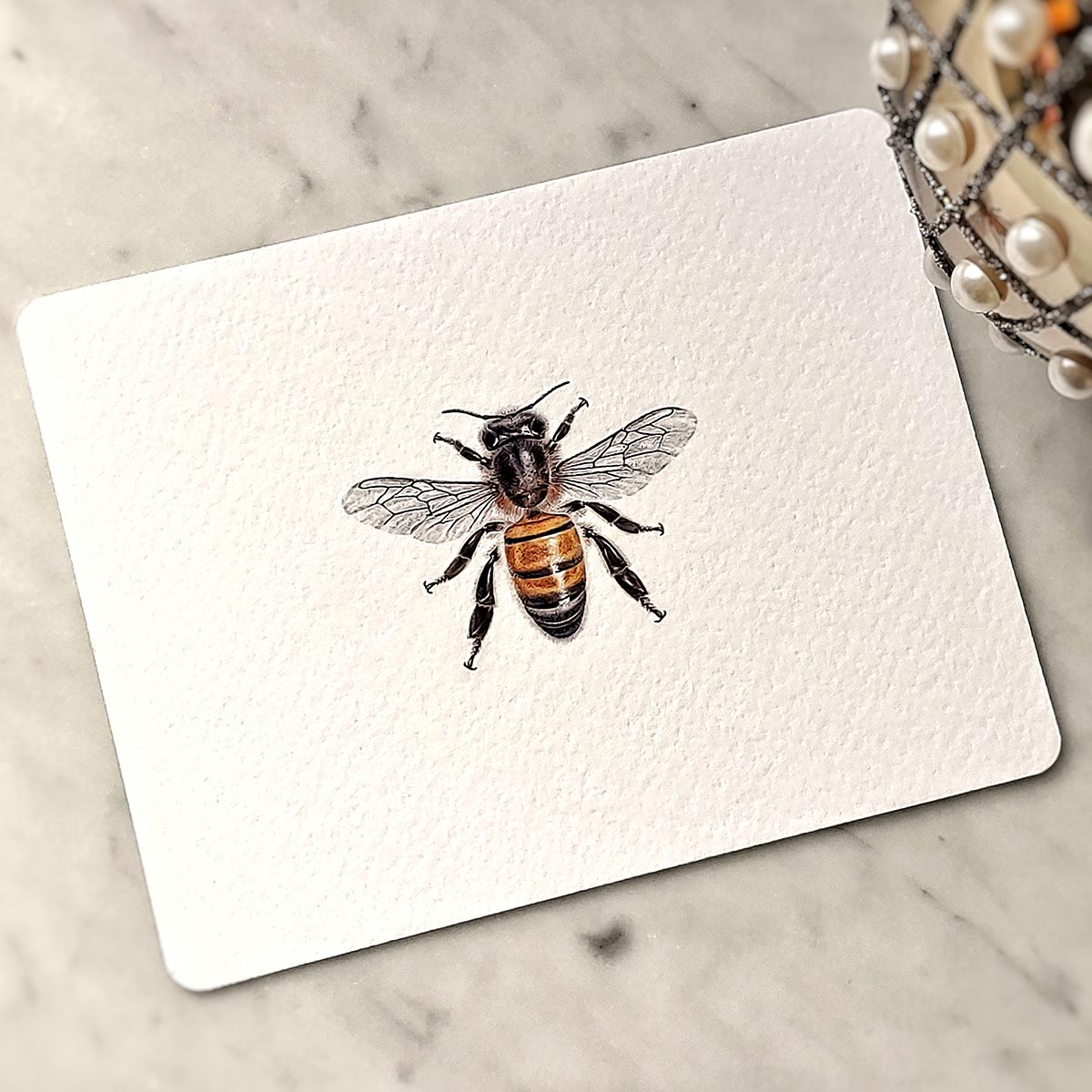 The Punctilious Mr. P's 'Bees' note cards