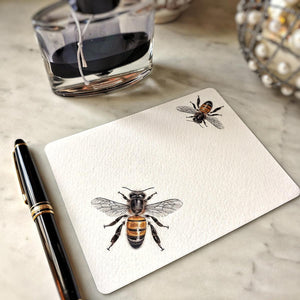 The Punctilious Mr. P's 'Bees' note card pack