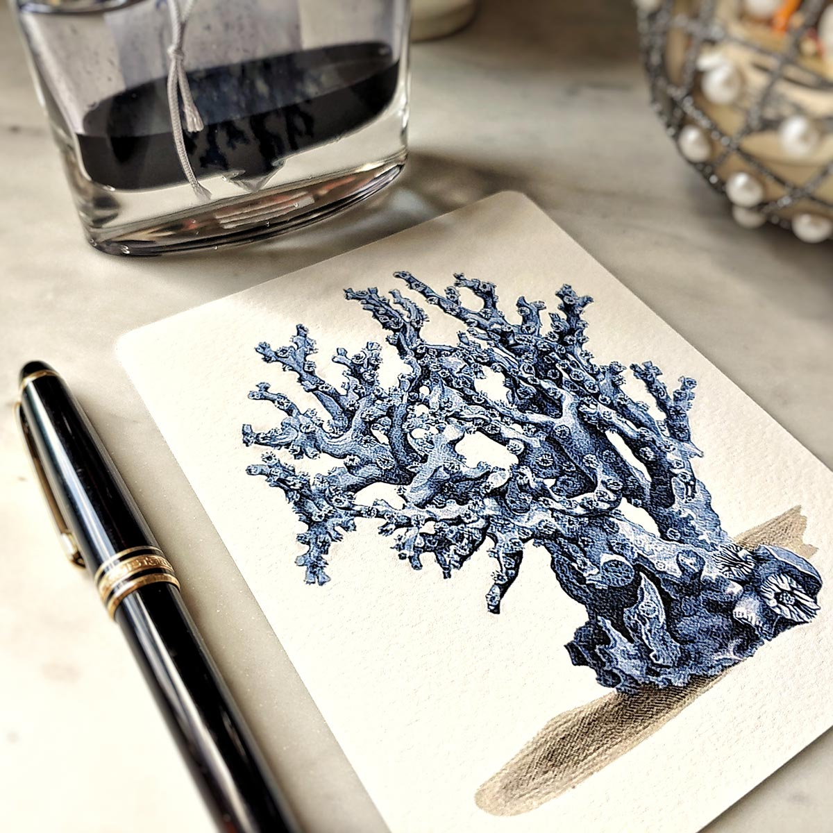 The Punctilious Mr. P's 'Blue Sea Fan & Coral' note card pack featuring a coral illustration
