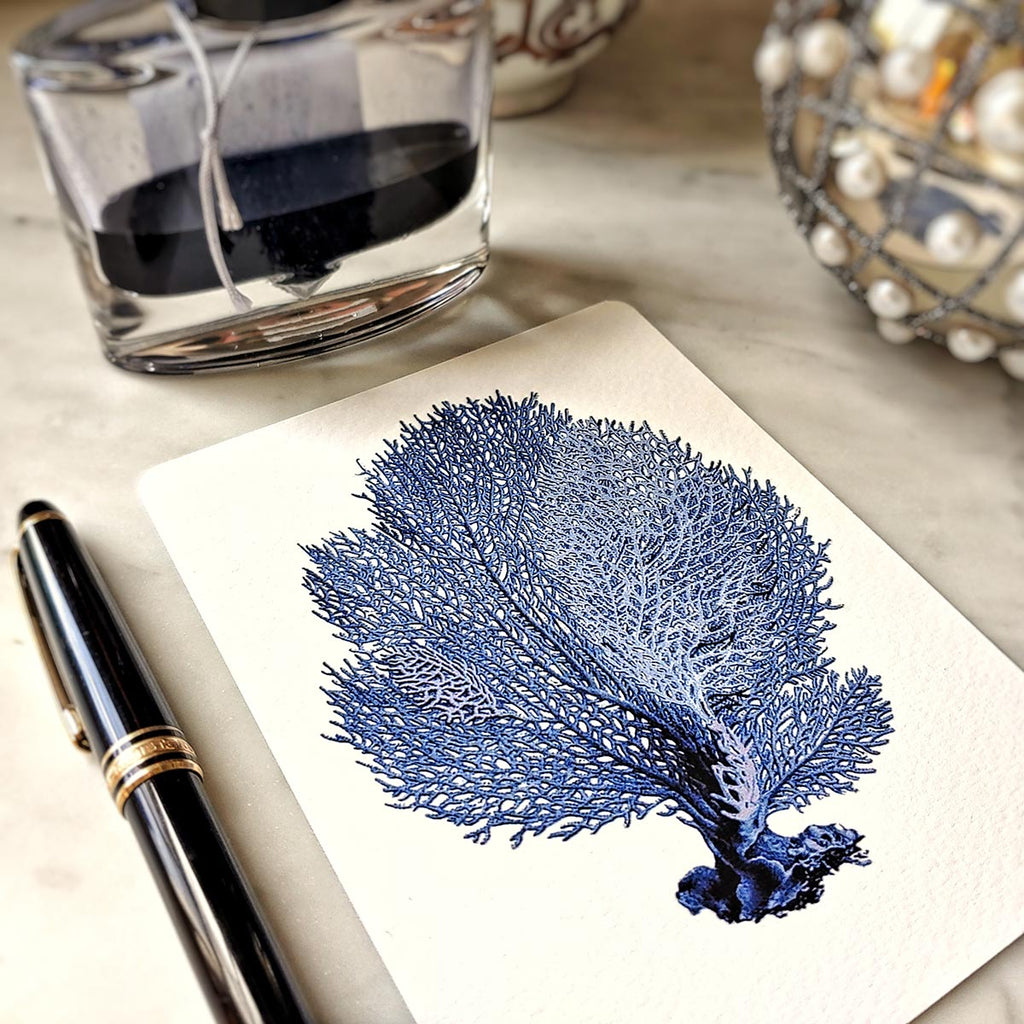 The Punctilious Mr. P's 'Blue Sea Fan & Coral' note card pack featuring a sea fan illustration