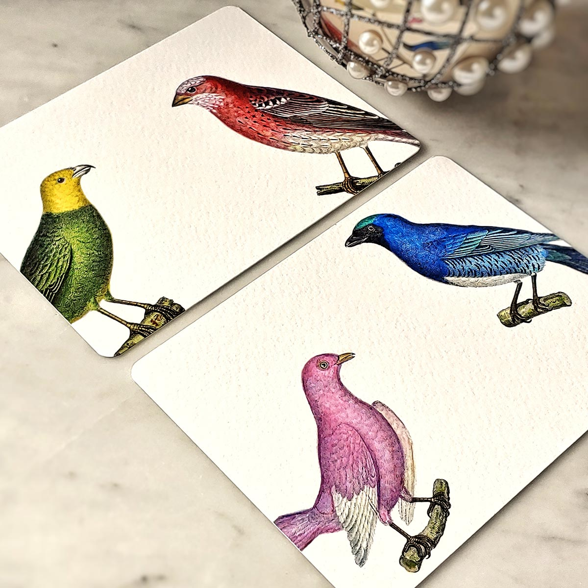 The Punctilious Mr. P's 'chromatic cuckoo' note card pack- showing pink, blue, green and red birds