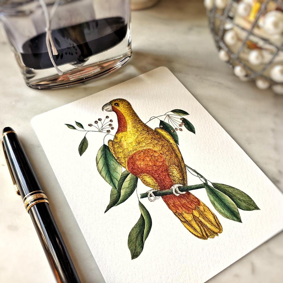 The Punctilious Mr. P's 'Parakeets' note card pack