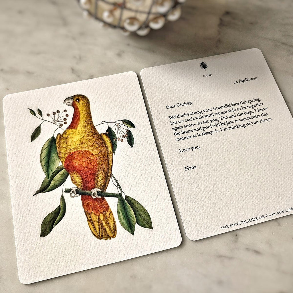 Single Personalized Note Card: Parakeets
