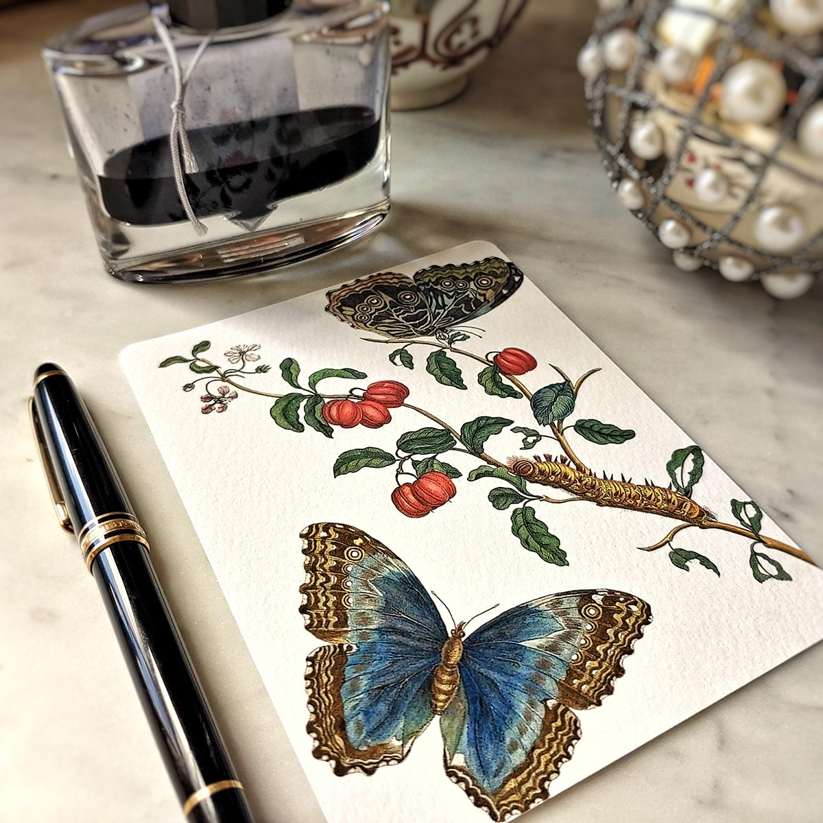 The Punctilious Mr. P's 'signs of spring' note card pack featuring blue butterflies and red fruit