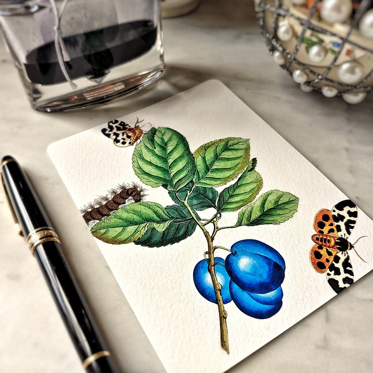 The Punctilious Mr. P's 'signs of spring' note card pack featuring butterflies and blue plum fruit