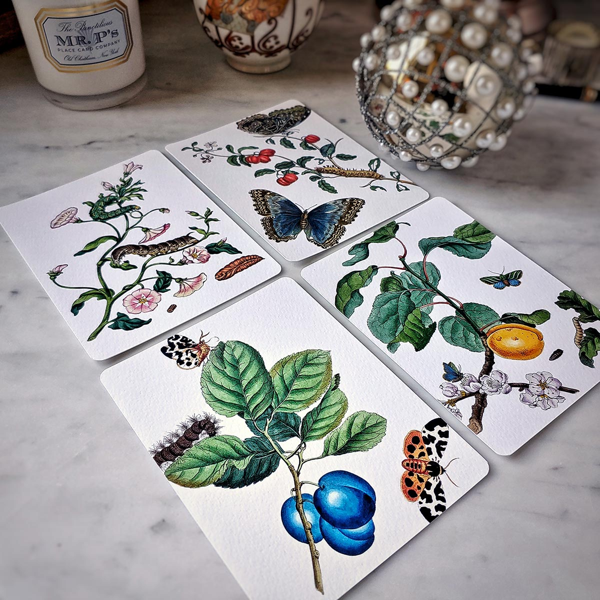 The Punctilious Mr. P's 'signs of spring' note card pack featuring all 4 cards with butterflies and fruit