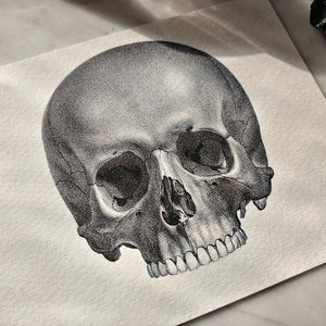 Detail view of The Punctilious Mr. P's 'The Skull' note card