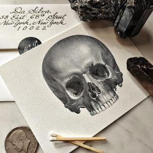 The Punctilious Mr. P's 'The Skull' note cards showing the back of the envelope on marble table with beautiful crystals in background