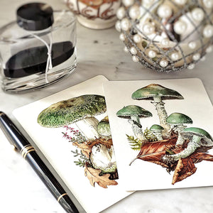 The Punctilious Mr. P's 'verdigris mushroom' note card pack showing both mushroom cards side by side
