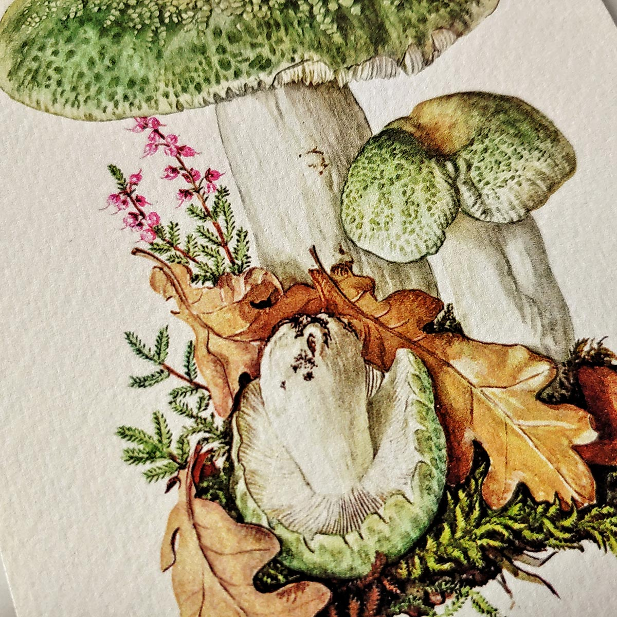 Showing fine detail of the printed green mushroom on watercolor paper