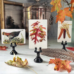 The Punctilious Mr. P's 'Autumnal Tableau' or thanksgiving themed place cards